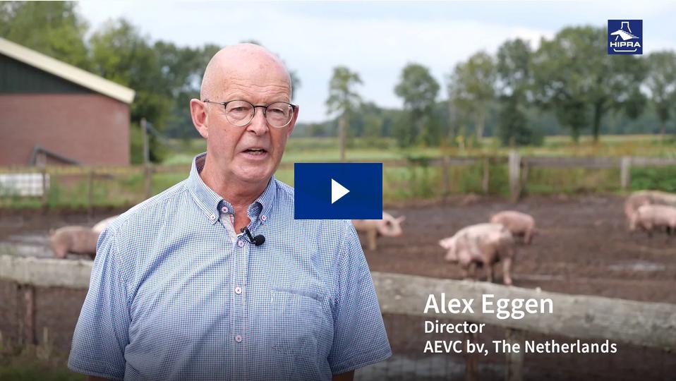 Alex Eggen: Vacunación frente a Mycoplasma